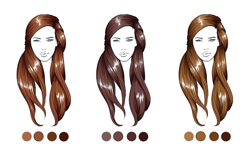 Color the Hair<span></span>