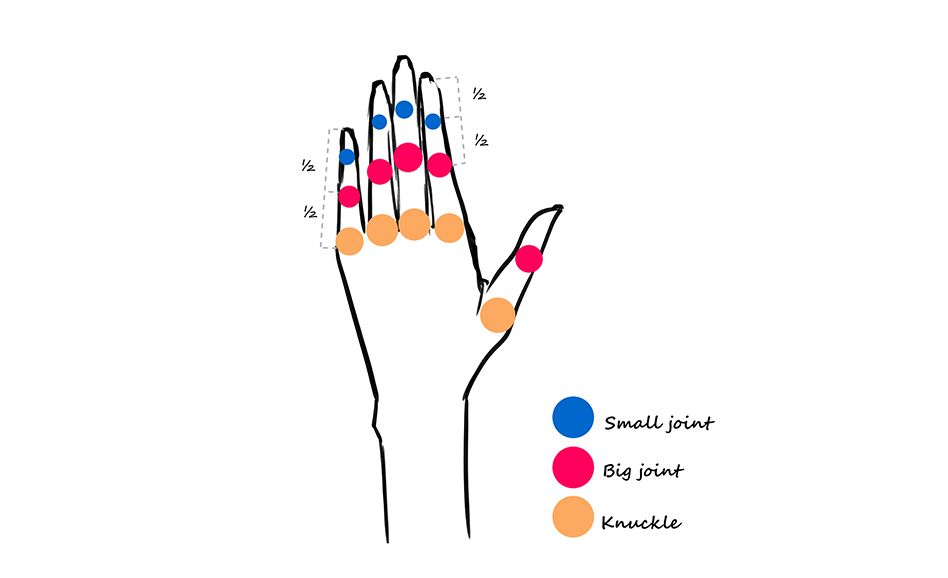 Learn the Hands Structure<span></span>